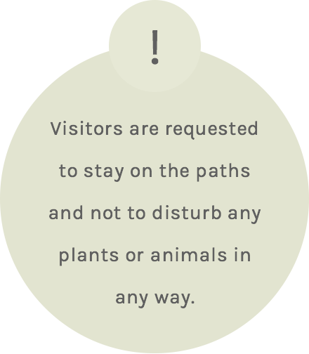 Visitors are requested to stay on the paths and not to disturb any plants or animals in any way!